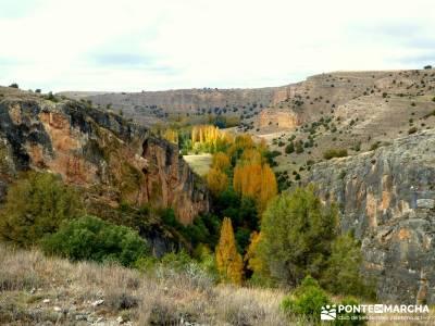 Hoces Río Riaza - Villa Ayllón; senderismo en jaca solana de ávila